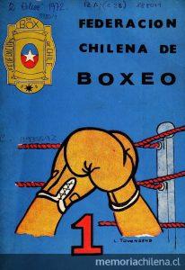Box en Chile